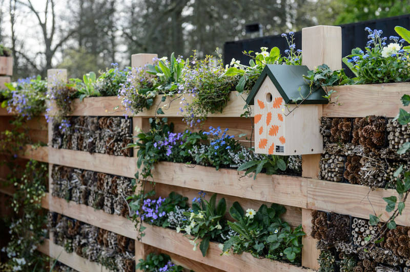 Garden Design Pembrokeshire wildlife fence planted with bee friendly plants and bug hotels.