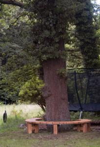 Green oak tree seat sat around a majestic oak tree
